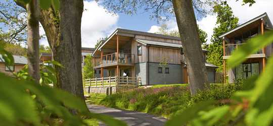 4 Night Breaks for the Price of 3 at the Woodland Lodges