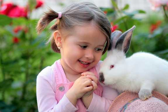 a young girl and her rabbit friend