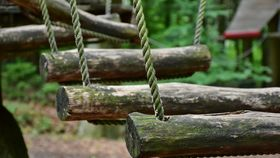 high ropes course in the forest