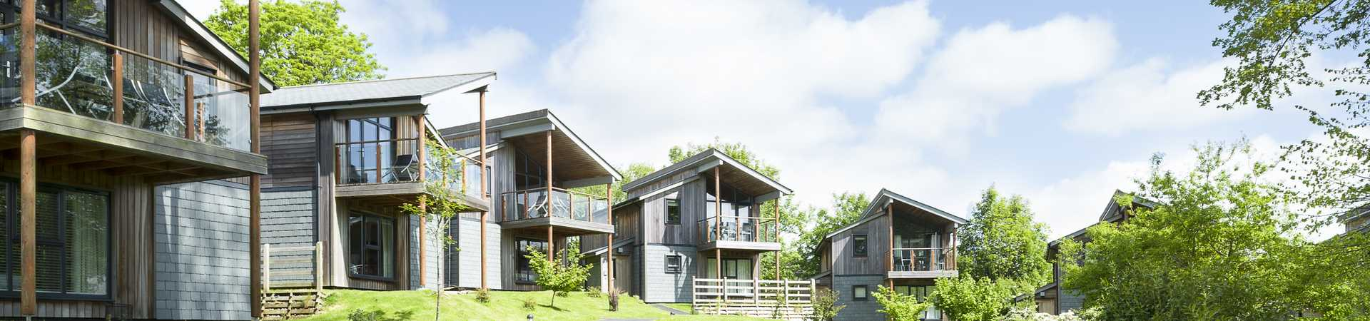 row of luxury woodland lodges in cornwall